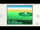 Pokemon Black and White 2 News - Nintendo Channel Trailer